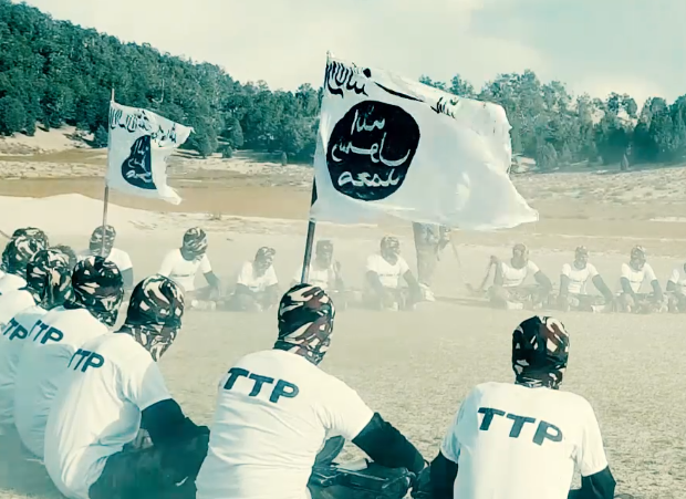 This image has an empty alt attribute; its file name is ttp...white-flag-t-shirts-jan.-2021-1.png